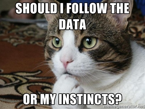 Image result for cats making a decision meme