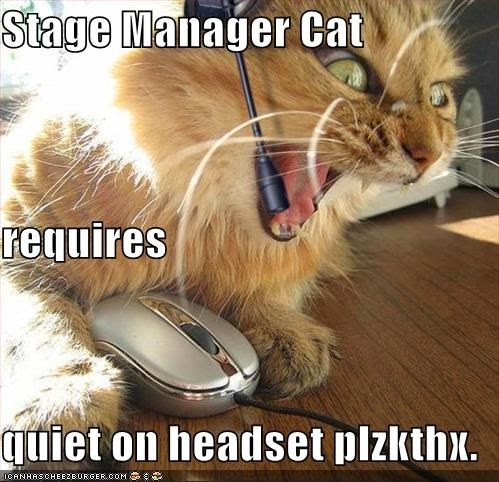 Image result for cat on stage meme